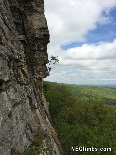 Martin Avidan hanging out on Strictly From Nowhere (5.7+)