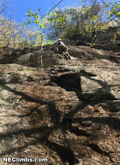 That Joe Perez, seems that he's always stepping' high...